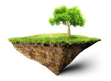 Floating island with tree Stock Image