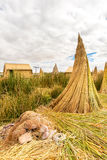 Floating Islands on Lake Titicaca Puno, Peru, South America, thatched home. Dense root that plants Khili Royalty Free Stock Images