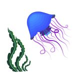 Floating jellyfish and seaweed. Floating blue jellyfish on white background. Underwater world ocean stock illustration