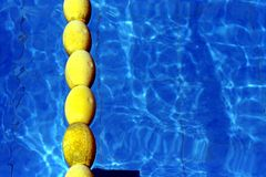 Floating lane separators in a swimming pool Royalty Free Stock Photo