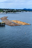 Floating Logs in Nanaimo Stock Image