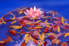 Floating lotus candle Stock Photos