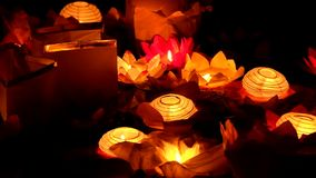 Floating Lotus Flower Paper Lanterns On Water stock video