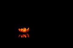 Floating Lotus Flower Paper Lanterns On Water Stock Image