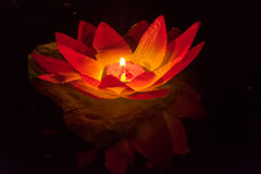 Floating Lotus Flower Paper Lanterns On Water Stock Images