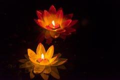 Floating Lotus Flower Paper Lanterns On Water Stock Photography