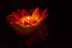 Floating Lotus Flower Paper Lanterns On Water Royalty Free Stock Photos