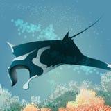 Floating manta ray. Manta ray floating against coral reef royalty free illustration