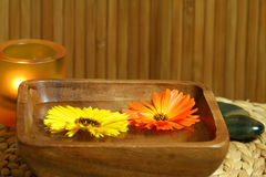 Floating marigold flowers. Two marigolds - yellow and orange, floating on woter in wooden bowl. Therapeutic calming spa treatment Royalty Free Stock Photos