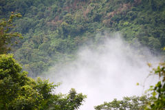 Floating mist. In Mountain at KhaoYai National Park, Thailand Stock Image