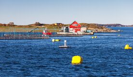 Free Floating Norwegian Fish Farm For Salmon Growing Stock Photography - 188838342