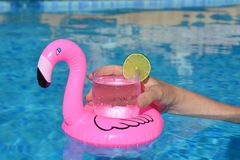 Floating pink flamingo drinks holder in swimming pool stock photo