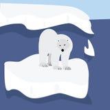 Floating polar bear Stock Image