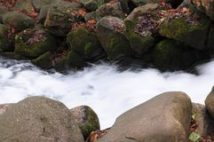 Floating river and stones Stock Photography