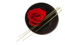 Floating Rose in a Bowl Royalty Free Stock Photography