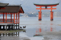 Floating torii gate. Red floating torii gate outside Itsukushima Shrine at Miyajima at low tide Royalty Free Stock Photography