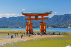 Floating torii gate in Miyajima Royalty Free Stock Images