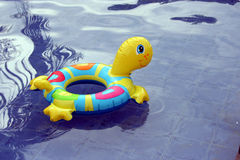 Floating Turtle. Plastic turtle lifesaver in a pool Royalty Free Stock Images
