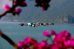 Floating Village. Floating villiage in Halong Bay Vietnam Royalty Free Stock Image