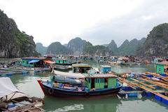 Floating village. A floating fisherman's village in ha long bay, northern vietnam Royalty Free Stock Photography