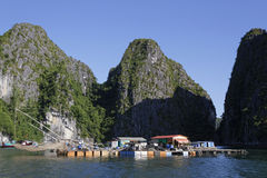 A floating village in Ha Long Bay Royalty Free Stock Images