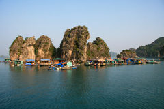 Floating village in Halong Bay. Floating village of Vietnamese boatpeople in Halong Bay royalty free stock photos