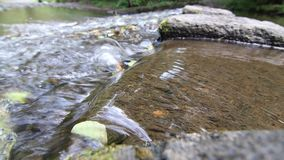 Floating Water. Abstract detail of the floating water - brook stock video footage