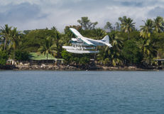 Floatplane landing in tropical Fiji. Turtle Airways  Grumman floatplane coming in to land in Fiji. Set against tropical foliage Stock Images