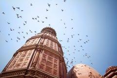 Flock av fåglar i den blåa skyen royaltyfri foto