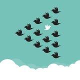 Flock av fåglar som flyger i himlen vektor illustrationer
