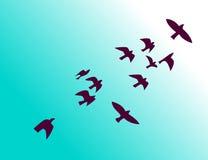 Flock av fåglar som flyger i himmel vektor illustrationer