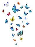 Flock av fjärilar vektor illustrationer