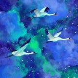 Flock av härliga fågelfåglar på en fantastisk himmelvattenfärgillustration Galaktiska stjärnor, natthimmel, ljusa ljus vektor illustrationer