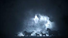 Flock av hästar, i att köra till och med en episk blixtstorm arkivfilmer