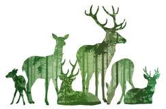 Flock av hjortkonturn vektor illustrationer