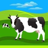 Flock av kor på ängen Arkivfoton