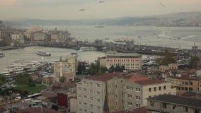Flock av seagulls som flyger ovanför pittoresk cityscape av Istanbul med den Bosphorus sikten med marin- trafik långsam rörelse lager videofilmer