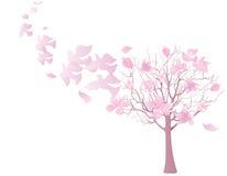 Flock av svalor som flyger från det blommande trädet Arkivbild