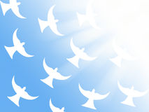 Flock av vita duvor som flyger till symbolet för illustration för ljusa strålar det kristna av fred och den heliga anden Royaltyfri Foto