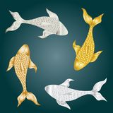A flock of beautiful fish for a bright background image.  Stock Photography