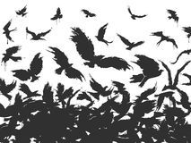 Flock of birds in black. On a white background Royalty Free Stock Photos