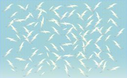 A flock of birds feeding on , silhouettes of flying seagulls, set of isolated white outlines of soaring birds. Geometric tex. Ture Stock Photography