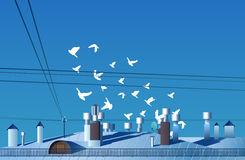 A flock of birds flies over the roof of the day vector. Royalty Free Stock Images