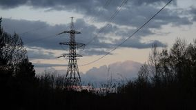 Flock of birds fly and alight on transmission tower stock video