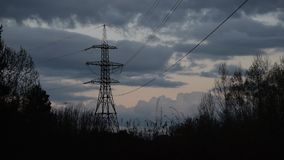 Flock of birds fly around transmission tower at dusk stock video