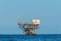Flock of birds in sea oil rig in the peruvian coast at Piura Per Stock Image