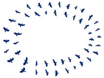 Flock birds. Silhouettes of birds on a white background. Vector. Illustration Stock Photo