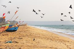 A flock of black crows flies to the sea, against a background of multi-colored boats, in India, GOA.  royalty free stock photo