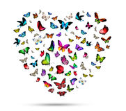 Flock of butterflies. As heart Royalty Free Stock Photography