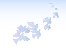 Flock of doves Royalty Free Stock Photography